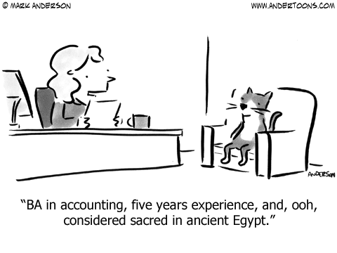 Cat resume: BA in accounting, five years experience, and, ooh, considered sacred in ancient Egypt.