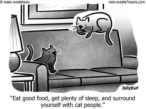 Cat mentor to kitten mentee: Eat good food, get plenty of sleep, and surround yourself with cat people.